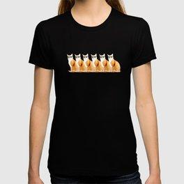 COOL CATS UNITED T-shirt