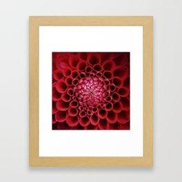 Dahlia Heart Framed Art Print