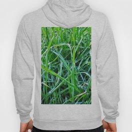 Dewy Grass Hoody