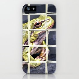 The InFocus Happy Frog Collection VII iPhone Case