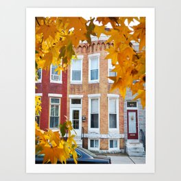 Colorful Houses of Hampden Art Print