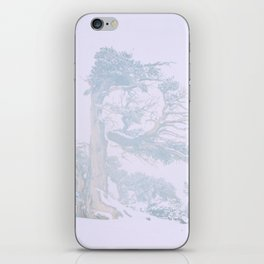 Ancient Tree in wind, snow, and fog on Windy Ridge, Colorado iPhone Skin