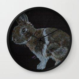 Rescued dwarf rabbit Wall Clock