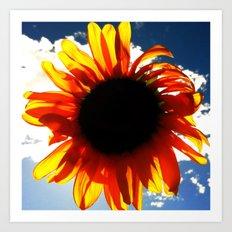 FLOWER 033 Art Print