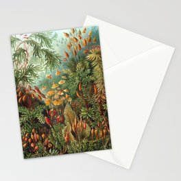 Ernst Haeckel Muscinae Microscopic Landscape Stationery Cards