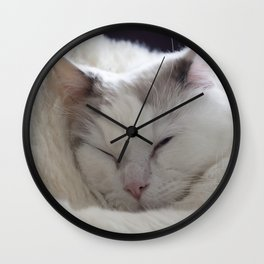 Ragdoll Cat Cuddles Wall Clock