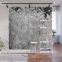 Flower | Flowers | Frosted Ornamental Grasses Wall Mural