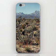 Cold Creek, Nevada iPhone & iPod Skin