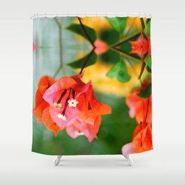 Bougainvillea flower Shower Curtain
