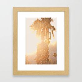 California Fine Art Print Yellow, Peach, Cream La Quinta Palm Tree Photograph - Desert Sunset  Framed Art Print