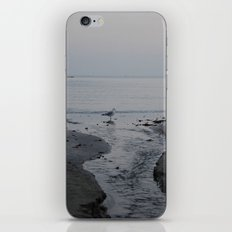 It all leads to the ocean.  iPhone & iPod Skin