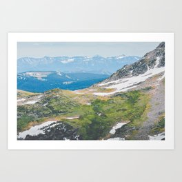 Alpine Mosses Art Print