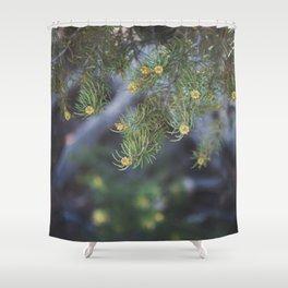 Summer in Big Bear Shower Curtain