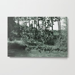 photograph of river landscape and plants in the field in soft green color for clothes, furniture, gi Metal Print