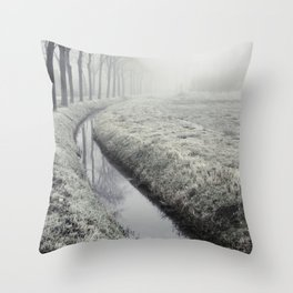 Winter Field II Throw Pillow