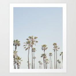 California Palm Trees II Art Print