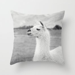 Mountain Llama Throw Pillow