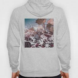 Frosty Transformation to Winter - An abstracted impression Hoody