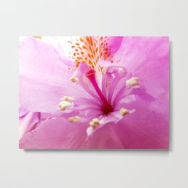 Inside rhododendron Metal Print
