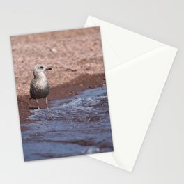 Gull in the Waves Stationery Cards
