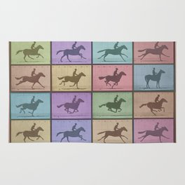 Time Lapse Motion Study Horse Color Rug