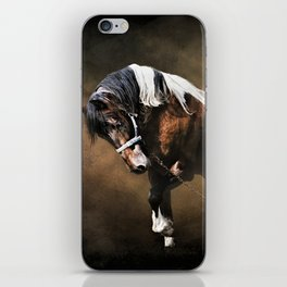 The Restless Gypsy iPhone Skin