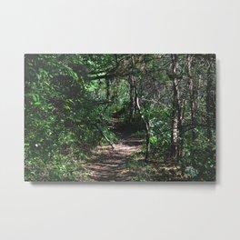 Path Less Taken Metal Print