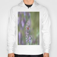 ladybug Hoodies featuring Ladybug by Stecker Photographie
