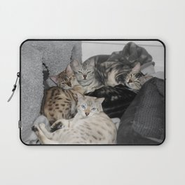 Bengal Cat Kitty Pile  Laptop Sleeve