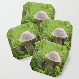 Mushroom in the Morning Dew by Althéa Photo Coaster