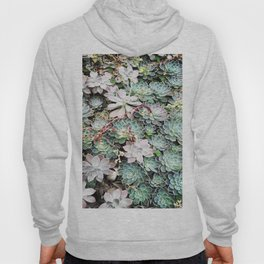 A group of Succulents Hoody