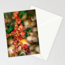 Autumn Glory Stationery Cards