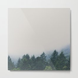muir woods | mill valley, california Metal Print