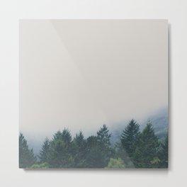 muir woods | mill valley, california Metal Print