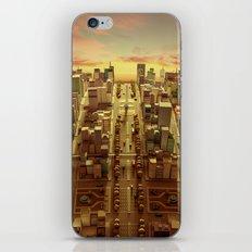 Argentine iPhone Skin