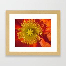 7G Yellow Heart Orange Sun 7 Framed Art Print