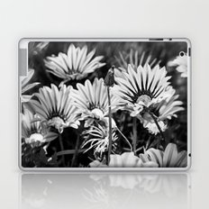 Desert Daisies (bnw) - Daisy Project in memory of Mackenzie Laptop & iPad Skin