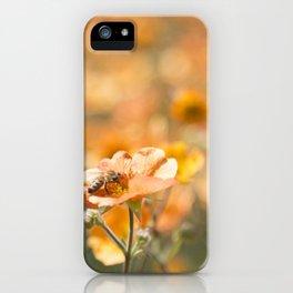 Bee in an Orange Field iPhone Case