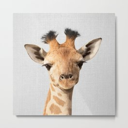Baby Giraffe - Colorful Metal Print