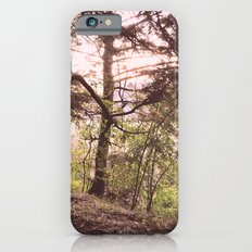 In the Daylight iPhone 6s Slim Case