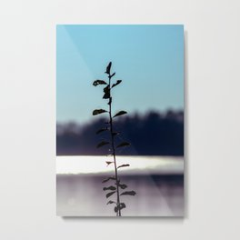 Concept nature : respice finem Metal Print