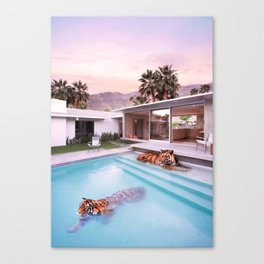 Palm Springs Tigers Canvas Print