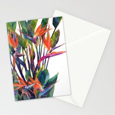 The bird of paradise Stationery Cards