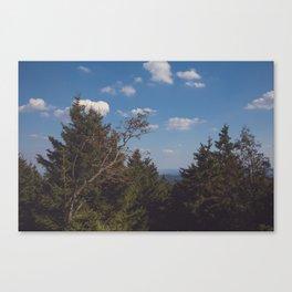 Brocken View Canvas Print