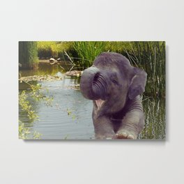 Elephant and Water Metal Print