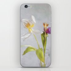 tulips in their prime of life iPhone & iPod Skin