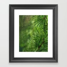 Mélèze Framed Art Print