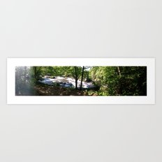 falls2 Art Print