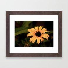 Faded Sunflower Framed Art Print