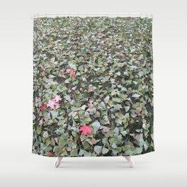 green ginkgo wishes Shower Curtain